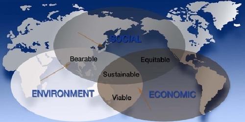 social economy characteristics
